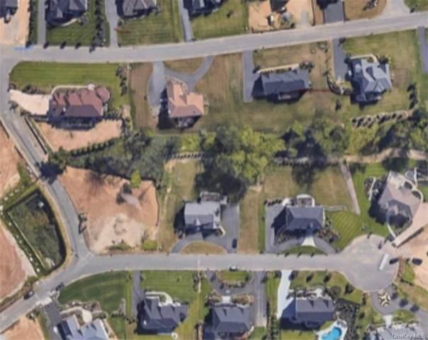 2 Golden Rod Lane, New City, NY 10956 (MLS #H6078229) :: William Raveis Baer & McIntosh