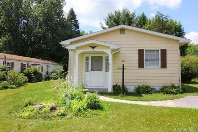836 Berkshire Road, Wingdale, NY 12594 (MLS #H6078271) :: Kevin Kalyan Realty, Inc.