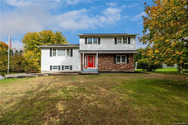102 Peddler Hill Road, Monroe, NY 10950 (MLS #H6078306) :: Nicole Burke, MBA | Charles Rutenberg Realty