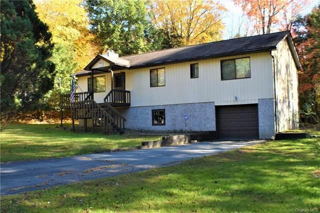 87 Gina Lane, Bethel, NY 12720 (MLS #H6078341) :: Kendall Group Real Estate | Keller Williams