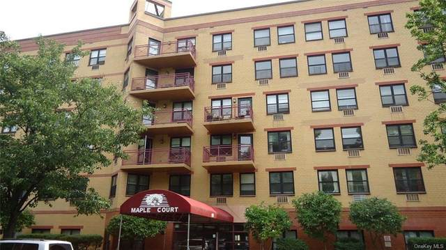 1901 Madison #214, Newyork, NY 10035 (MLS #H6078346) :: McAteer & Will Estates | Keller Williams Real Estate