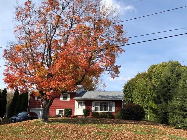 1 Continental Drive, New Windsor, NY 12553 (MLS #H6078381) :: William Raveis Baer & McIntosh