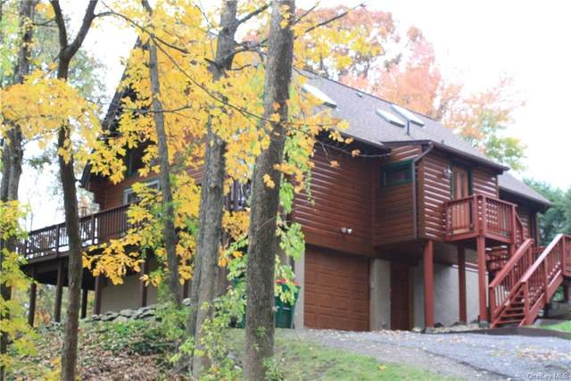 46 Tiger Trail, Carmel, NY 10512 (MLS #H6078447) :: Nicole Burke, MBA   Charles Rutenberg Realty