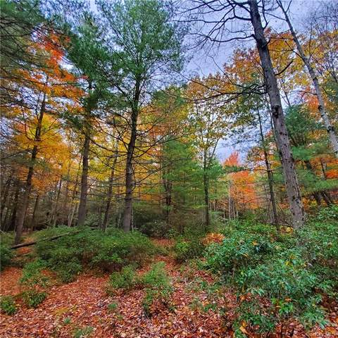 Lot 24 County Route 56, Wurtsboro, NY 12790 (MLS #H6078480) :: William Raveis Baer & McIntosh