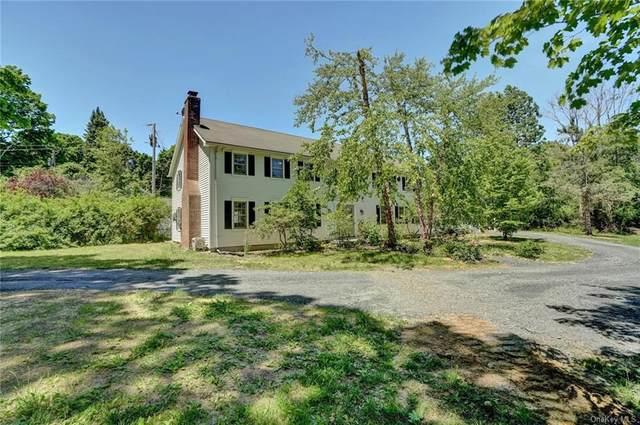 12 Mcintyre Lane, Stanfordville, NY 12581 (MLS #H6078539) :: Frank Schiavone with William Raveis Real Estate
