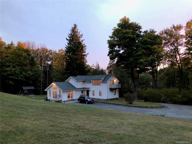 340 Upper Pine Kill Road, Wurtsboro, NY 12790 (MLS #H6078565) :: Kendall Group Real Estate | Keller Williams