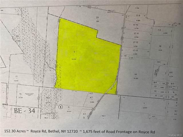 Royce Road Tr 75, Bethel, NY 12720 (MLS #H6078581) :: Kendall Group Real Estate | Keller Williams