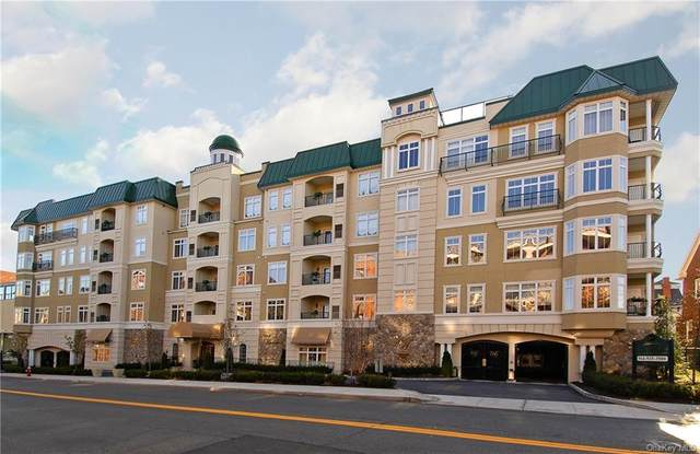 410 Westchester Avenue #305, Port Chester, NY 10573 (MLS #H6078614) :: Cronin & Company Real Estate