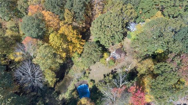 187 Church Hill Road, Carmel, NY 10512 (MLS #H6078677) :: Cronin & Company Real Estate