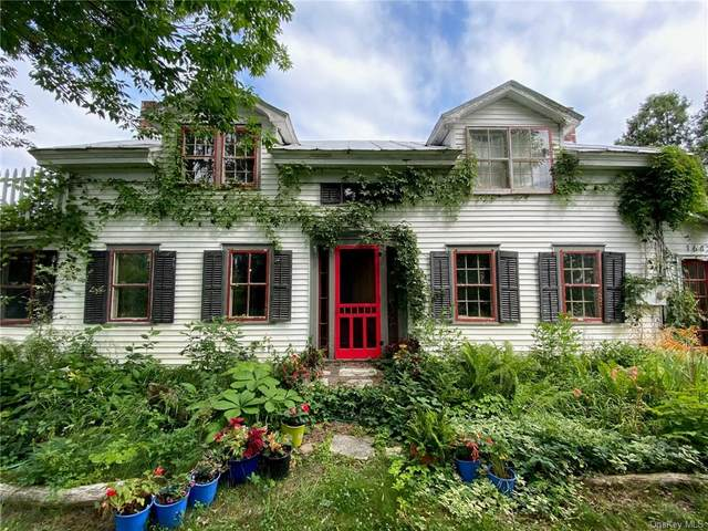 1642 State Route 66, Chatham, NY 12075 (MLS #H6078812) :: Nicole Burke, MBA | Charles Rutenberg Realty
