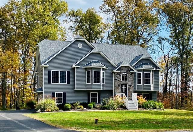 22 Abigail Court, Rock Tavern, NY 12575 (MLS #H6078833) :: Nicole Burke, MBA | Charles Rutenberg Realty