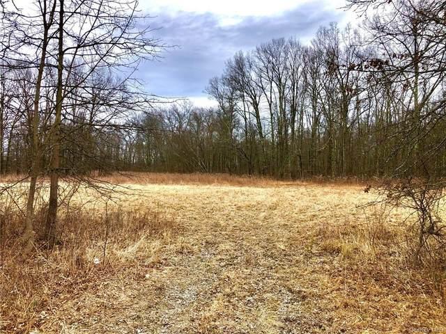 Albany Post Road, Wallkill, NY 12589 (MLS #H6078972) :: Cronin & Company Real Estate