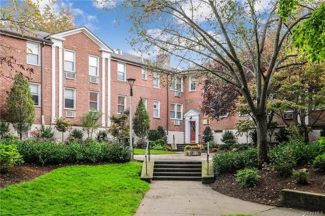311 Palmer Terrace 2B, Mamaroneck, NY 10543 (MLS #H6079019) :: Nicole Burke, MBA | Charles Rutenberg Realty