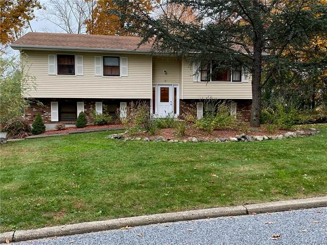 21 Sturr Lane, Florida, NY 10921 (MLS #H6079021) :: RE/MAX RoNIN