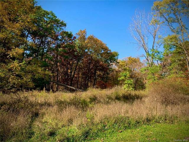 1435 B East Mombasha Road, Monroe, NY 10950 (MLS #H6079024) :: William Raveis Baer & McIntosh