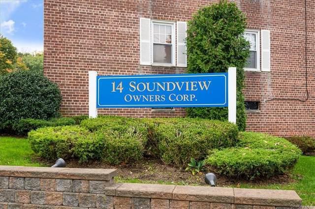 14 Soundview Avenue #47, White Plains, NY 10606 (MLS #H6079031) :: Shalini Schetty Team