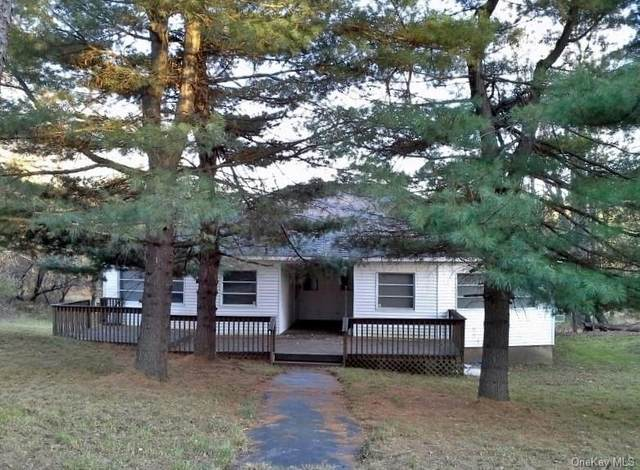 97 Varnell Road, Monticello, NY 12701 (MLS #H6079139) :: RE/MAX Edge