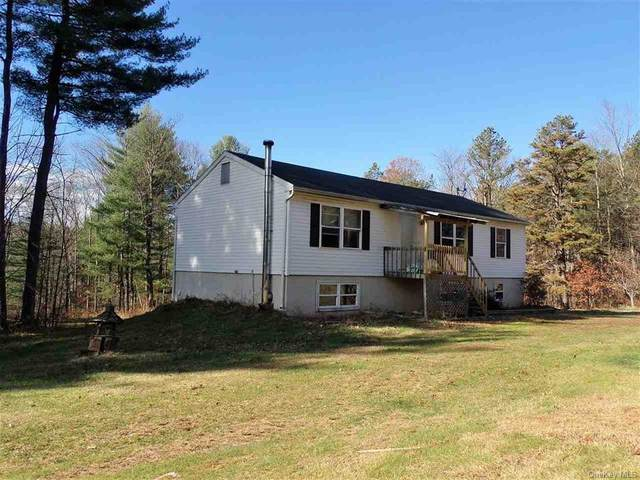 277 Humphrey Road, Narrowsburg, NY 12764 (MLS #H6079156) :: McAteer & Will Estates | Keller Williams Real Estate