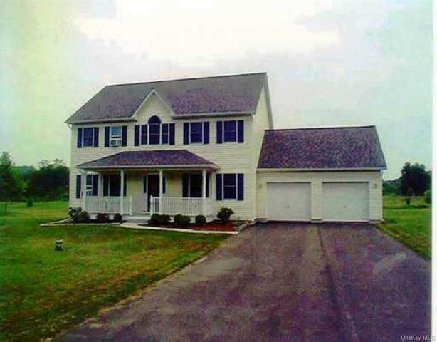 11 Twin Island Circle, Walden, NY 12586 (MLS #H6079171) :: RE/MAX RoNIN