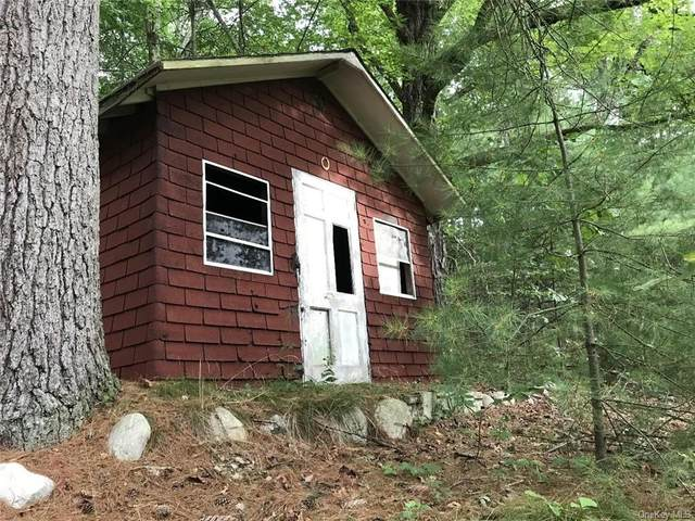 0 State Route 209, Wurtsboro, NY 12790 (MLS #H6079190) :: Cronin & Company Real Estate