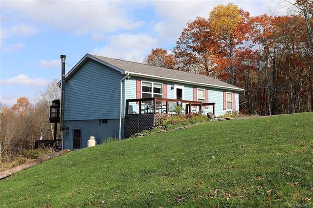 92 W Simmon Road, Fremont Center, NY 12736 (MLS #H6079195) :: RE/MAX Edge