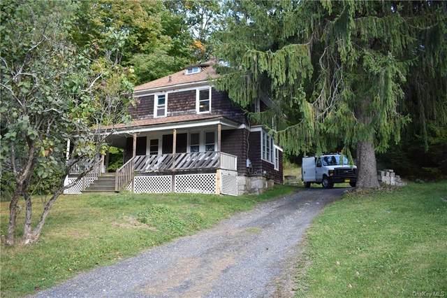 316 Cragsmoor Road, Pine Bush, NY 12566 (MLS #H6079209) :: Nicole Burke, MBA | Charles Rutenberg Realty