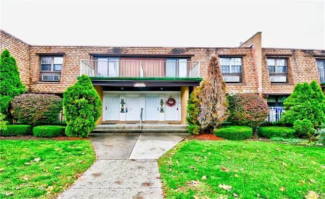 408 Carpenter Avenue #4, Newburgh, NY 12550 (MLS #H6079226) :: Mark Boyland Real Estate Team