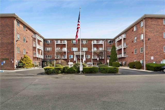 838 Pelhamdale Avenue 2D, New Rochelle, NY 10801 (MLS #H6079263) :: Cronin & Company Real Estate