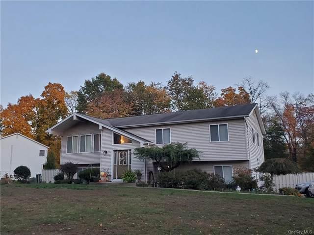 11 S Highview Avenue, New City, NY 10956 (MLS #H6079346) :: Cronin & Company Real Estate