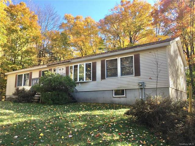 31 W Tusten Place, Smallwood, NY 12778 (MLS #H6079375) :: Live Love LI