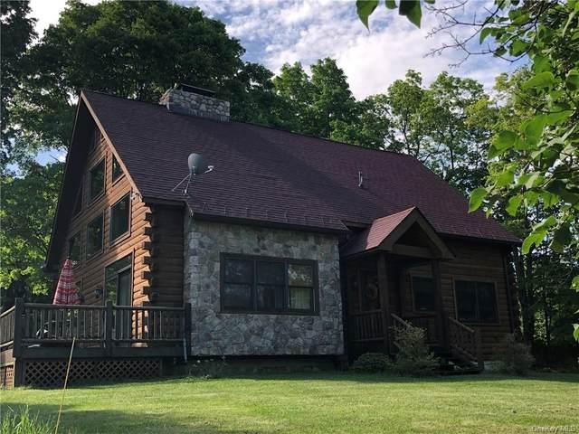 40 Lenape Lane, Cragsmoor, NY 12420 (MLS #H6079436) :: Nicole Burke, MBA | Charles Rutenberg Realty