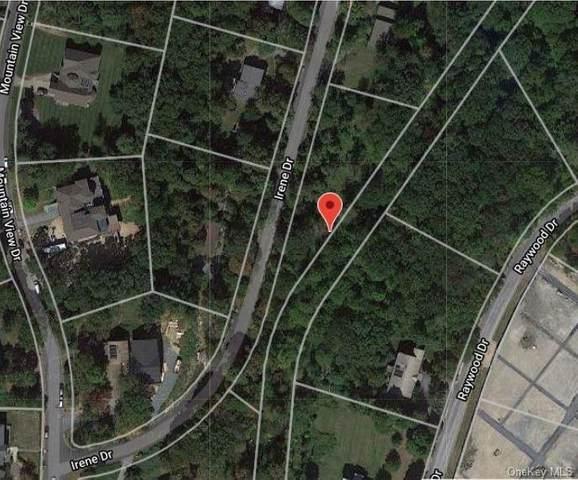 24 Irene Drive, Monroe, NY 10950 (MLS #H6079440) :: William Raveis Baer & McIntosh