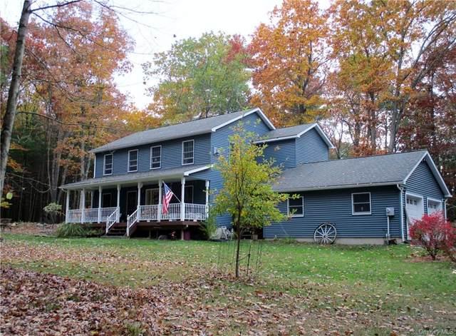 47 Griffin (River Ridge) Road, Forestburgh, NY 12729 (MLS #H6079493) :: McAteer & Will Estates | Keller Williams Real Estate