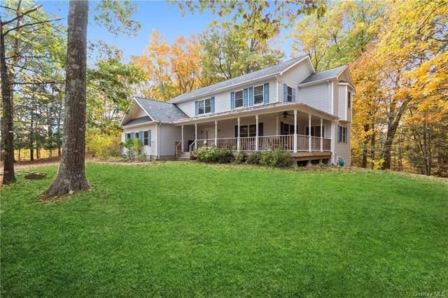 27 Kipp Road, Rhinebeck, NY 12572 (MLS #H6079517) :: Nicole Burke, MBA | Charles Rutenberg Realty