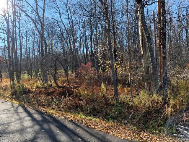 Revonah Hill Road, Liberty, NY 12754 (MLS #H6079546) :: William Raveis Baer & McIntosh