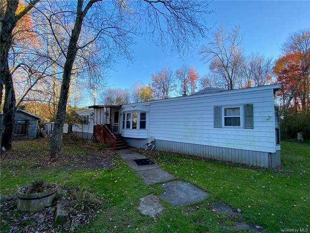 314 Behr Road, Jeffersonville, NY 12748 (MLS #H6079565) :: RE/MAX Edge