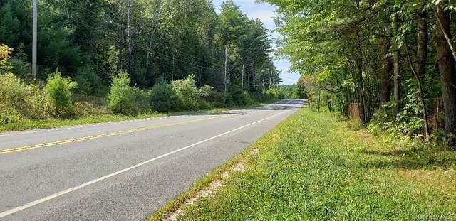 Loch Sheldrake Road, Hurleyville, NY 14747 (MLS #H6079690) :: Signature Premier Properties