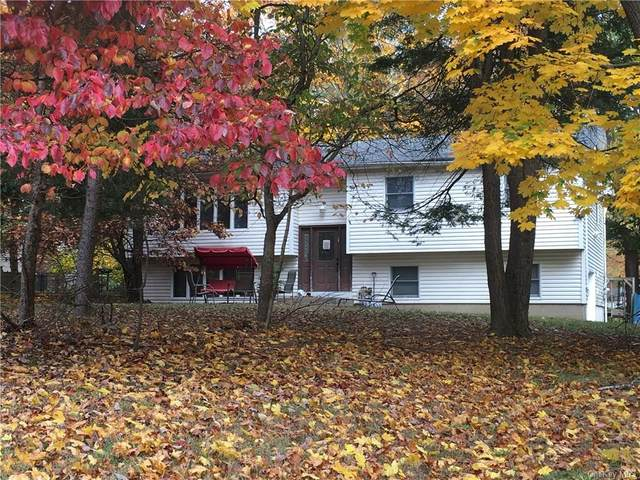 19 Sandy Brook Drive, Spring Valley, NY 10977 (MLS #H6079707) :: William Raveis Baer & McIntosh