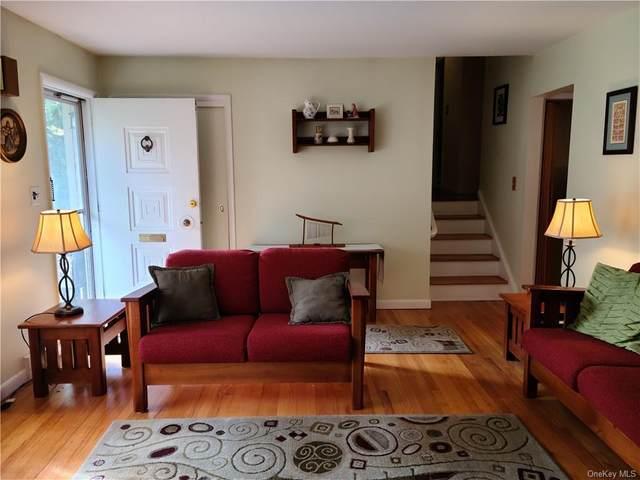 20 Van Orden Avenue, Suffern, NY 10901 (MLS #H6079787) :: Nicole Burke, MBA   Charles Rutenberg Realty