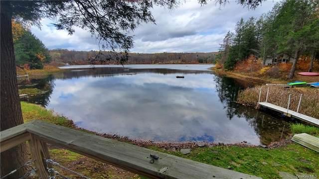 535 Delaware Lake Road, Long Eddy, NY 13783 (MLS #H6079893) :: McAteer & Will Estates | Keller Williams Real Estate