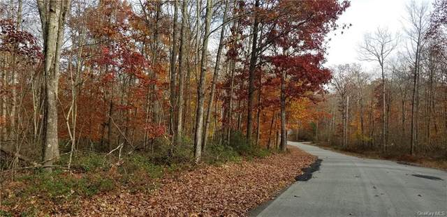 Lot 42 Perry Pond Road (Nys Rt 97), Narrowsburg, NY 12764 (MLS #H6079894) :: Mark Seiden Real Estate Team