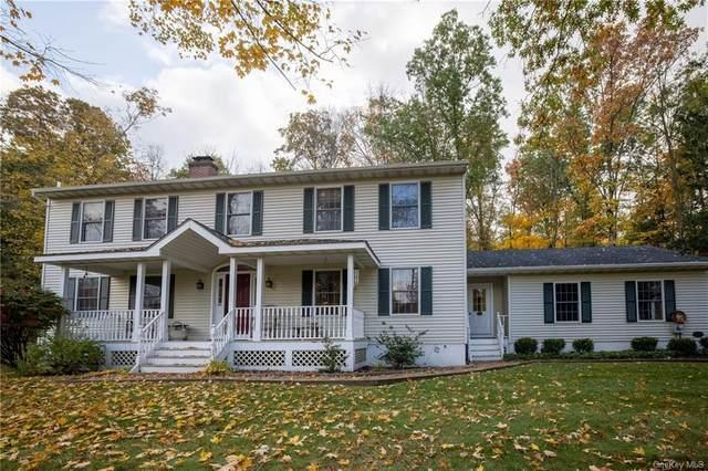 234 Snook Road, Fishkill, NY 12524 (MLS #H6079976) :: Nicole Burke, MBA | Charles Rutenberg Realty