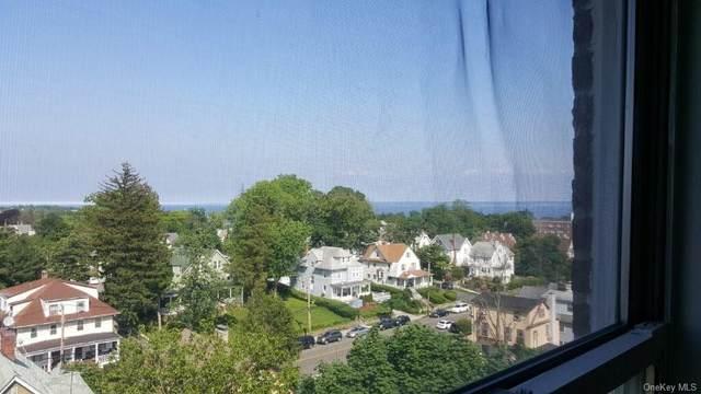 60 Locust Avenue A611, New Rochelle, NY 10801 (MLS #H6079977) :: Cronin & Company Real Estate