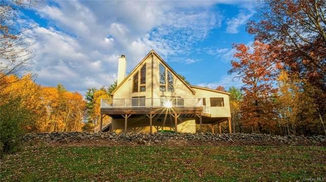 171 Grove School Road, Catskill, NY 12414 (MLS #H6080009) :: Kevin Kalyan Realty, Inc.