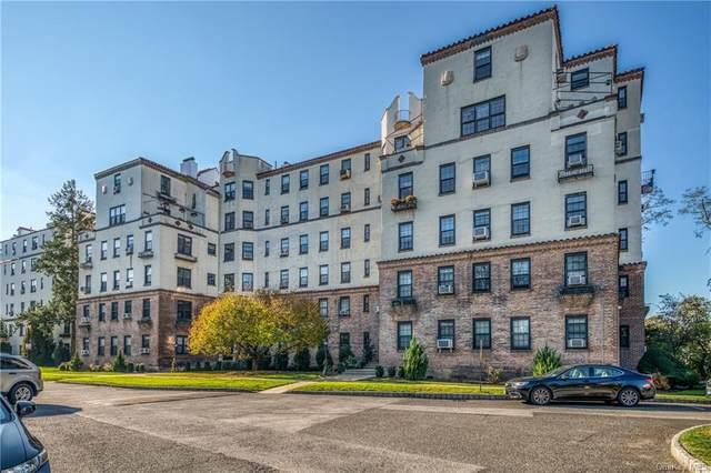1273 North Avenue 4E, Bldg.2, New Rochelle, NY 10804 (MLS #H6080060) :: RE/MAX RoNIN