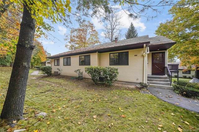 127 Columbia Court D, Yorktown Heights, NY 10598 (MLS #H6080070) :: Nicole Burke, MBA | Charles Rutenberg Realty