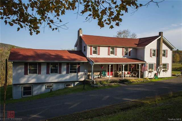 61 Mckenna Road, Grahamsville, NY 12740 (MLS #H6080098) :: Mark Seiden Real Estate Team