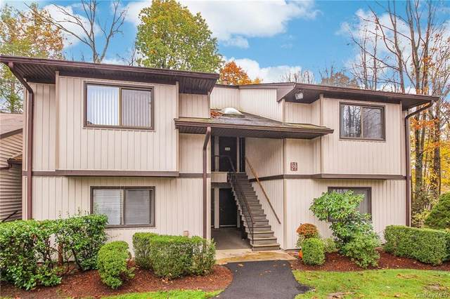 106 Village Road D, Yorktown Heights, NY 10598 (MLS #H6080131) :: RE/MAX RoNIN