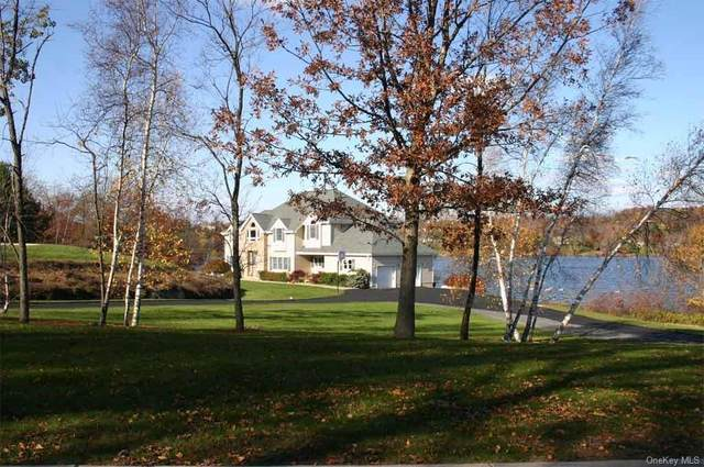 80 Waterview Terrace, New Windsor, NY 12553 (MLS #H6080140) :: William Raveis Baer & McIntosh