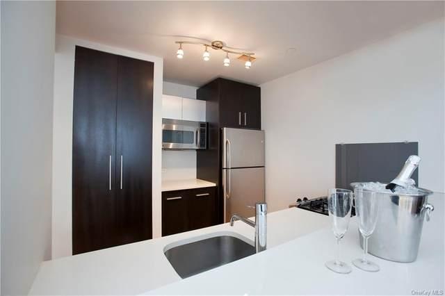 1311 Jackson Avenue 6C, Long Island City, NY 11101 (MLS #H6080147) :: Barbara Carter Team